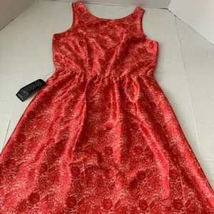Ladies NWT THE LIMITED Dress 6